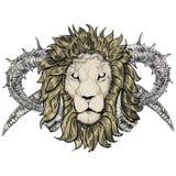 Esboço do leão da tatuagem com chifres ilustração royalty free