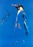 Esboço do pinguim Imagens de Stock Royalty Free