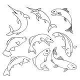 Esboço do selo da etiqueta dos peixes Imagens de Stock