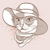 Esboço do vetor do gato elegante ilustração do vetor