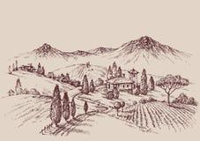 Esboço do vinhedo ilustração stock