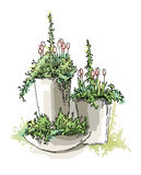 Esboço dos elementos do jardim Foto de Stock