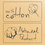 Esboço dos produtos naturais Fotos de Stock