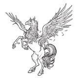 Esboço sobrenatural do animal de Hippogriff ou de Hippogryph em um fundo branco Fotografia de Stock