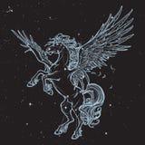 Esboço sobrenatural do animal de Pegasus isolado no fundo branco Fotografia de Stock