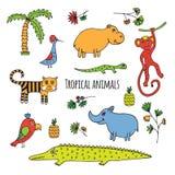 Esboço tropical dos animais Fotografia de Stock Royalty Free