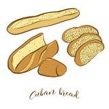 Esboços coloridos do pão cubano do pão ilustração royalty free