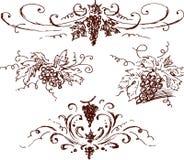 Esboços da uva ilustração royalty free