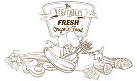 Esboce a composição tirada mão da vida do vegetal do esboço ainda (plano Fotos de Stock Royalty Free