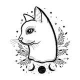 Esboce o gato gráfico da ilustração com mão místico e oculto símbolos tirados Ilustração do vetor Conceito astrológico e esotéric ilustração royalty free