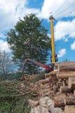 Esbosco del cavo in Austria Immagini Stock