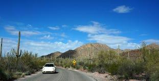 Escénico dentro del museo del desierto del Arizona-Sonora Fotos de archivo libres de regalías