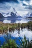 Escénico hermoso del importa del parque nacional del fiordland de Milford Sound Fotografía de archivo libre de regalías