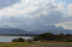 Escócia norte Foto de Stock Royalty Free