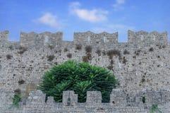 Escúdese la pared como modelo del bloque del fondo concreto medieval Imagenes de archivo