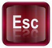 Esc icon Royalty Free Stock Images