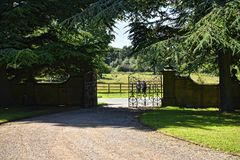 Esca al parco dei cervi in giardino alla bella casa di campagna vicino a Leeds West Yorkshire che non è la fiducia nazionale fotografia stock