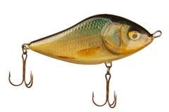 Esca del pesce isolata su bianco Fotografie Stock Libere da Diritti