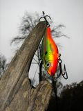 Esca di pesca Fotografia Stock