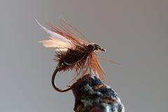 Esca di pesca con la mosca di Brown Fotografia Stock Libera da Diritti