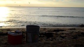 Esca per il pesce Fotografie Stock Libere da Diritti
