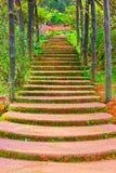 Escada à terra Fotografia de Stock Royalty Free