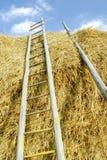 Escada. Imagens de Stock
