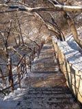 Escada 3 imagem de stock royalty free