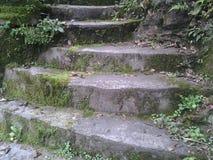 escada Foto de Stock Royalty Free