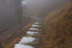 Escada da montanha com neve e grama da seca no shroude dos lados fotos de stock