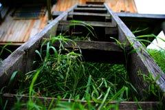 Escada de madeira Fotos de Stock
