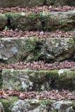 Escada de pedra Fotografia de Stock Royalty Free