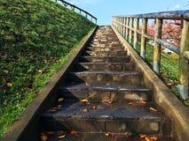 Escada de pedra com grama e o céu azul Imagens de Stock