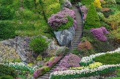 Escada do jardim Imagem de Stock Royalty Free