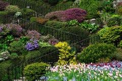 Escada do jardim Foto de Stock