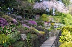 Escada do jardim Imagens de Stock