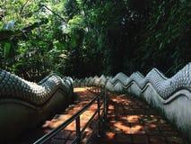 A escada do naga Imagens de Stock
