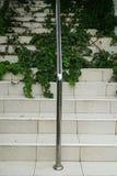 Escada moderna coberta com as ervas daninhas Fotografia de Stock Royalty Free