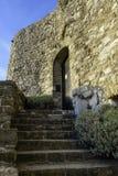 Escadaria à porta do castelo Fotografia de Stock