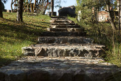 A escadaria Imagem de Stock