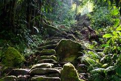 Escadaria ao céu natural fotografia de stock