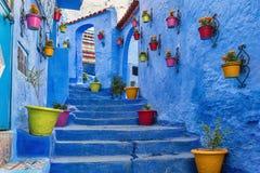 Escadaria azul com vasos de flores coloridos Fotos de Stock Royalty Free