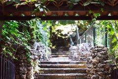 Escadaria cinzenta de pedra que conduz a um jardim verde bonito com plantas Jardim exótico em Turquia fotografia de stock royalty free