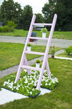 Escadaria com flores Fotografia de Stock