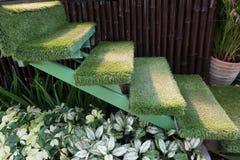 Escadaria da grama verde no jardim, decoração interior Fotografia de Stock Royalty Free