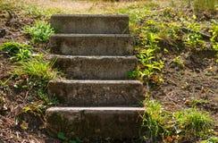 Escadaria de cinco etapas Imagens de Stock Royalty Free