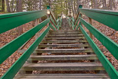 Escadaria de Dorwin Imagens de Stock