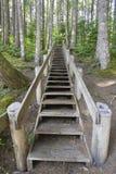 Escadaria de madeira na fuga de caminhada fotografia de stock