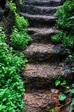 Escadaria de pedra. Imagem de Stock