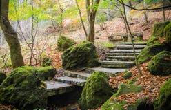 Escadaria de pedra Foto de Stock
